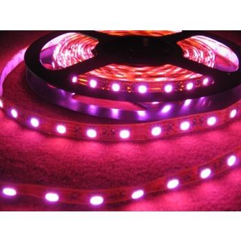 Painduv riba 60 LEDi roosa põlev